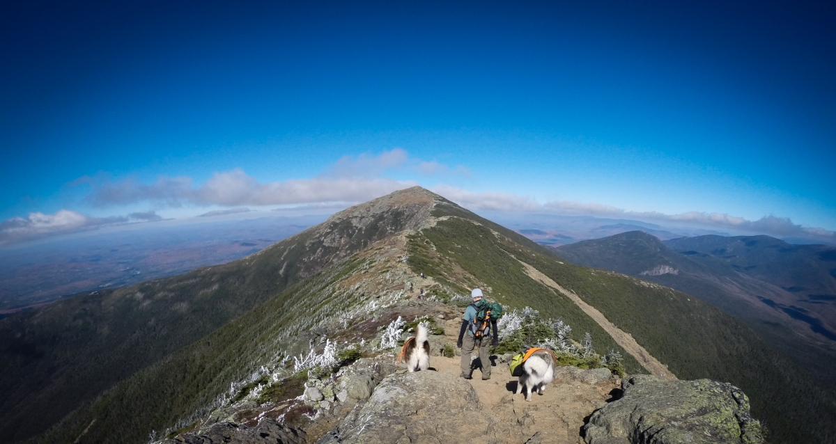 Trip Report: Franconia Ridge - WMNF, NH